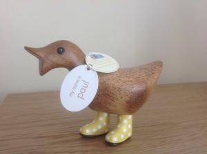 Meet Paul - the Encouragement Duck