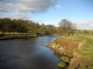 River_Wharfe_North_of_Barden_Bridge_-_geograph.org.uk_-_1092093