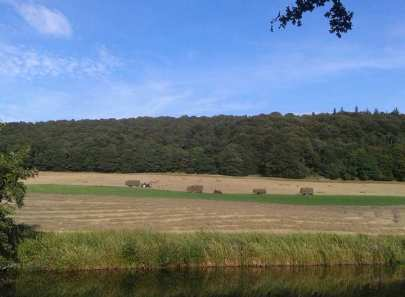Haymaking scene from K's 6 miles Sunday